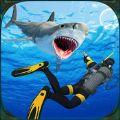 水下鱼叉猎鱼潜水探险