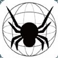 蜘蛛盟投票