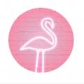 PinkMoon滤镜