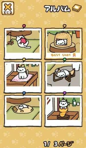 猫咪后院中文版图2