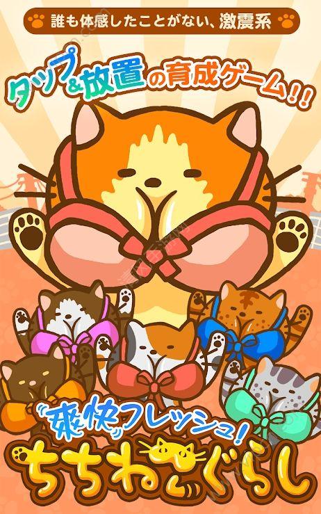 暴躁猫咪汉化版图片2