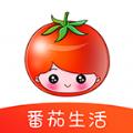 番茄生活APP