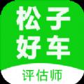 松子评估app